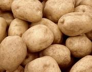 Картофель в Москве по 7 руб.