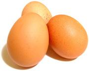 яйцо бройлера инкубационное