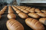 конвейерная, специальная сетка для пищевой промышленности