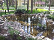 Водоемы,  пруды искусственные,  декоративные,  купальные