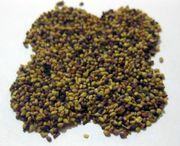 Клевер (семена многолетки)