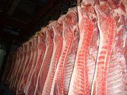 Свинина в полутушах 140руб, кг