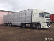 Транспортные услуги по России. Перевозка скота
