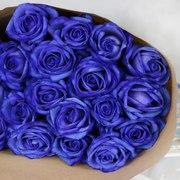Синие розы Казань